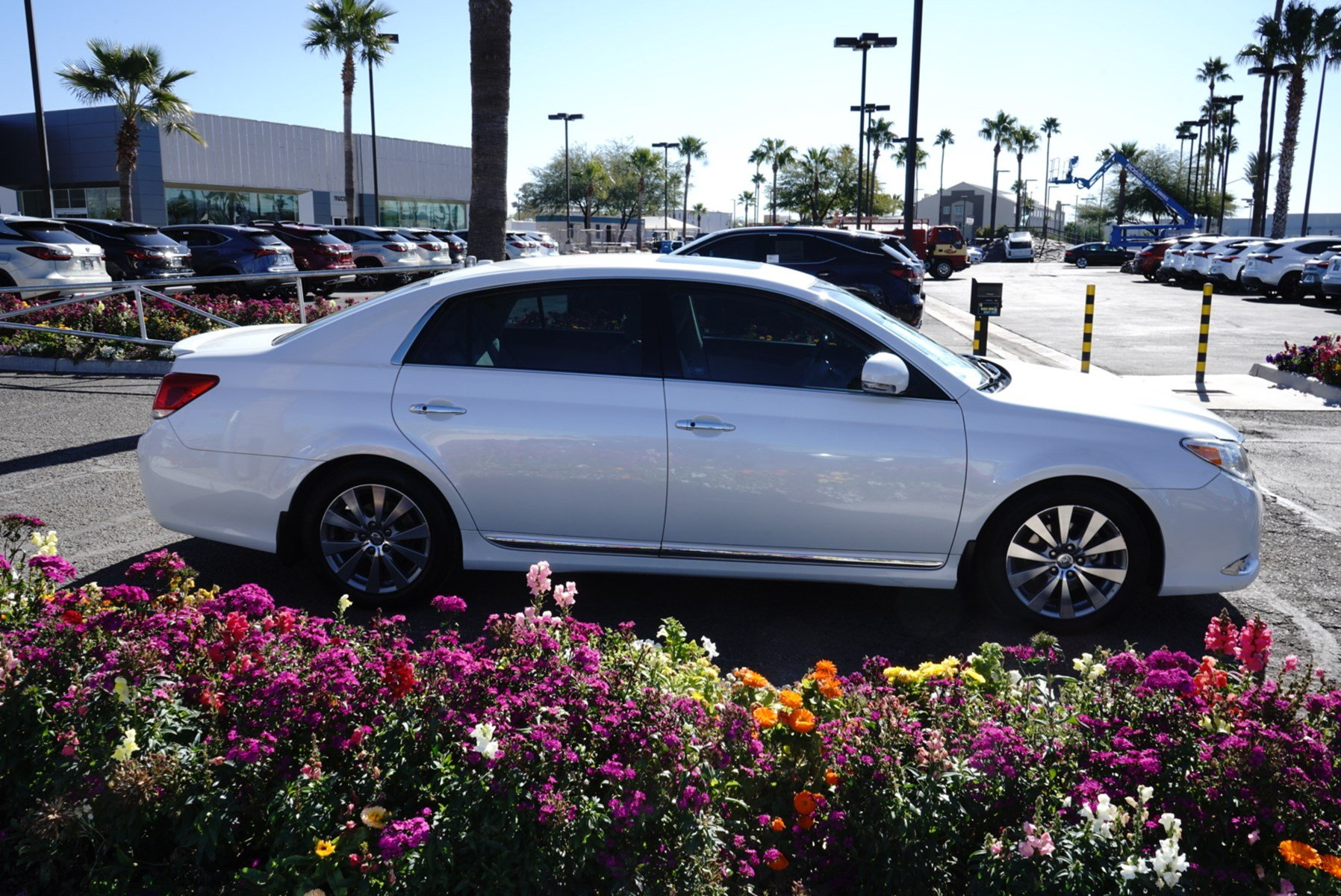 Pre-Owned 2012 Toyota Avalon